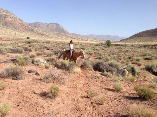 Bar 10 Ranch: Horse riding at Bar10!