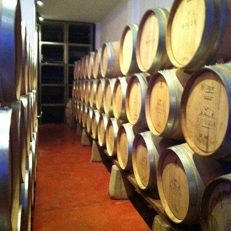 Bodega Bouza: Barris de vinho descansando