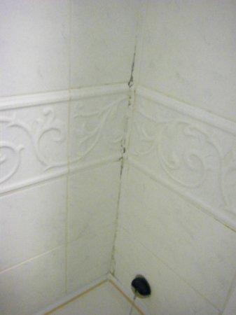 Maldron Hotel Pearse Street: Cracked tiles