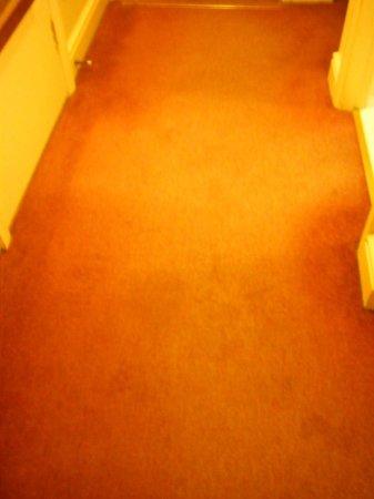 Maldron Hotel Pearse Street: Old carpet