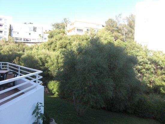 Aparthotel Ferrera Blanca: 5
