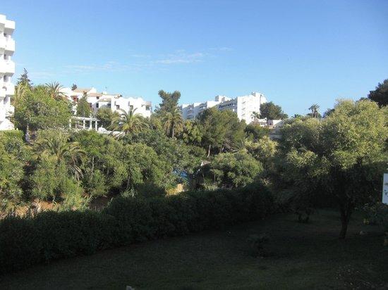 Aparthotel Ferrera Blanca: 8