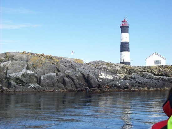 Eagle Wing Whale Watching Tours: lighthouse