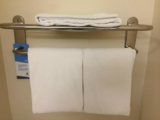 Fairfield Inn & Suites Holiday Tarpon Springs: tiny THIN towels