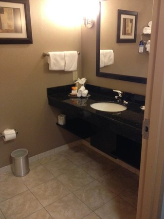BEST WESTERN PREMIER Miami International Airport Hotel & Suites: BATHROOM