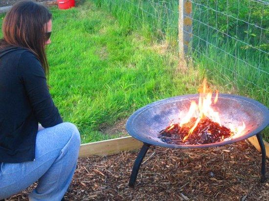 Dorset Country Holidays Glamping: 17