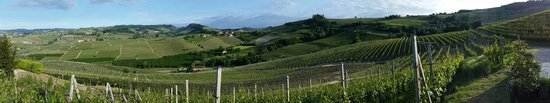 Palas Cerequio : Panoramic of view from edge of property
