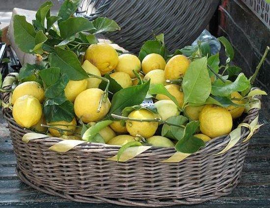 Ja pse limoni i ngrirë bën mrekulli kundër diabetit dhe tumoreve