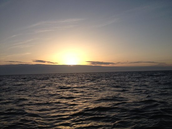 Blue Wolf Charters: Sunrise