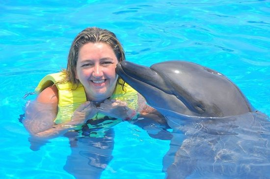 Dolphinaris Tulum: My new friend xx �������� xx
