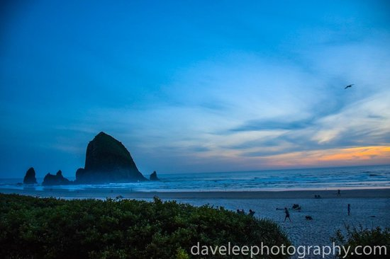 Hallmark Resort & Spa Cannon Beach: Haystack Rock - directly in front of the resort