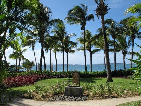 The Residence Mauritius : Garden