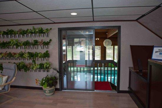 Bavarian Inn, Black Hills: Lobby, Living Plant Wall and interior pool entrance