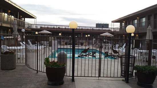 Quality Inn: Benson Best Western Pool