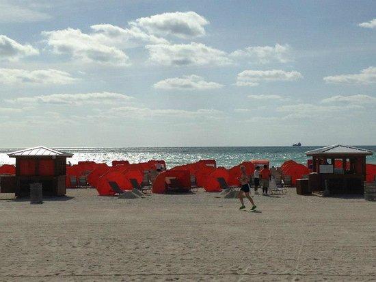 Royal Palm South Beach Miami, A Tribute Portfolio Resort: James Royal reserved beach area