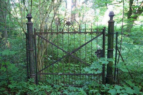 Knoops Park: Gartentor