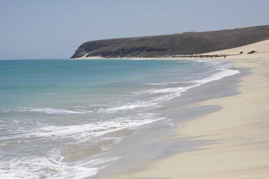 Playa de Sotavento : Sotovento