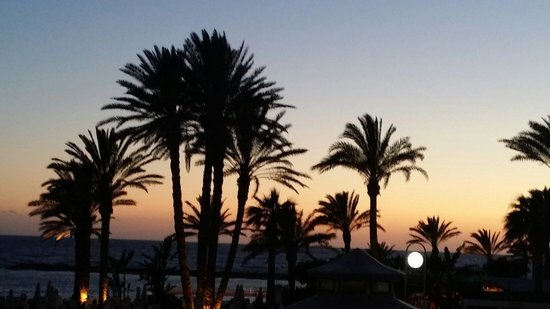 Constantinou Bros Pioneer Beach Hotel: Glorious