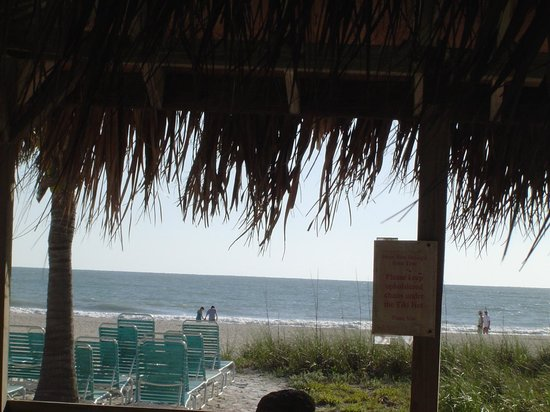 Cedar Cove Resort & Cottages : Peaceful and relaxing.  This is the real Florida!