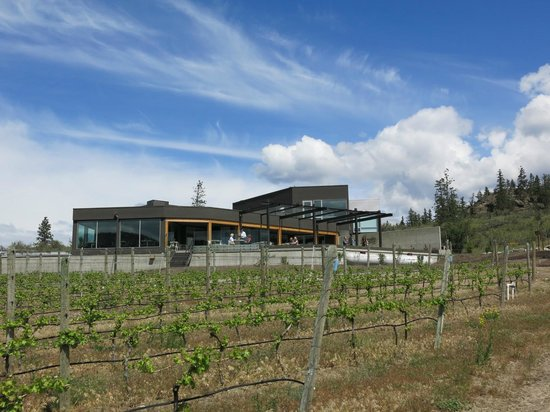 Liquidity Wines: View of the winery from the vineyard