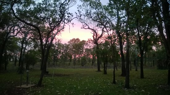 Batchelor Holiday Park: Sunset on the camping area