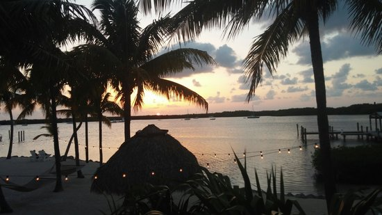 Coconut Palm Inn: sunset
