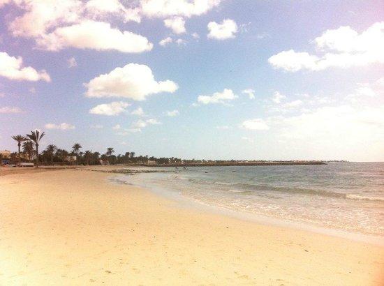 Hôtel Palm Azur : the beach