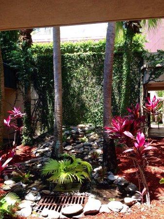 Allure Resort International Drive Orlando: Pond