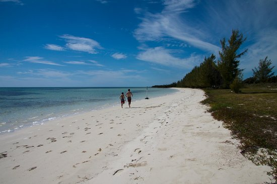 Chad4Nature Tours - Private Tours: gorgeous beach - we were the only ones there!