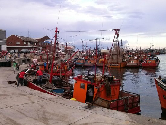 Puerto de Mar del Plata: El Puerto