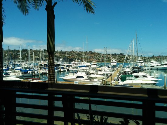 Best Western Plus Island Palms Hotel & Marina: View from our dinner table