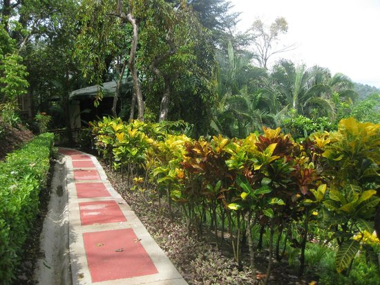 Tulemar Bungalows & Villas: Walkway to our Bungalow.