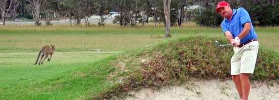 Port Macquarie Driving Range and Mini Golf: Bunker practice