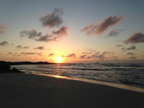 Malaekahana Beach Campground: Sunrise