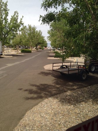 American RV Resort: Very clean and trees!