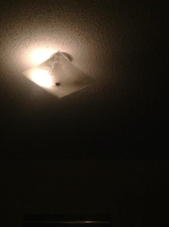 Alaskan Motel: dead fly lighting