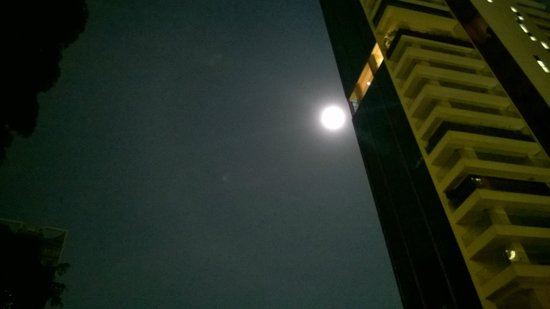 The Elizabeth Hotel by Far East Hospitality: Moonlight by the pool