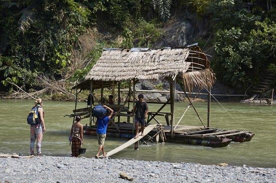Mega Inn - Tangkahan: boat