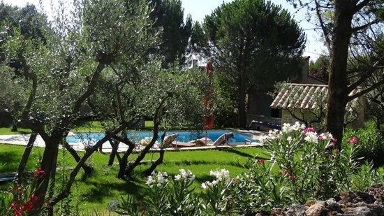 La Tour Cajou : La piscine