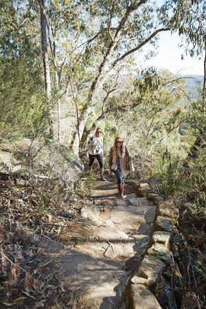 Cobungra, Australia: Paradise Falls track