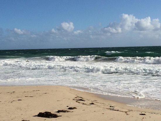City Beach : Best beach so far