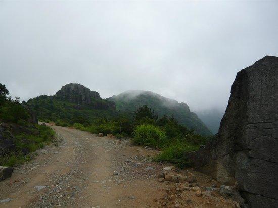 Huanggangshan - highest peak of Wuyi Shan NP - Picture of ...