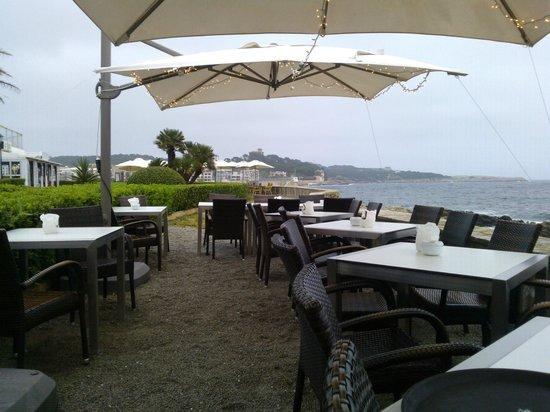 Euforia: Terrace views