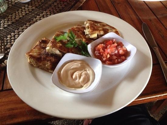 Nautilus: quesadilla for lunch