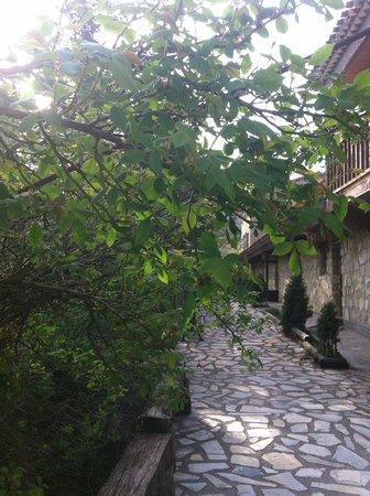 Hotel Rural Apartamentos Los Quinones: porche