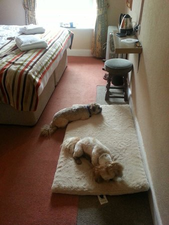 The Royal at Dockray: Absolutely loved our night away with my doggies. Hotel outstandingly clean and so welcoming
