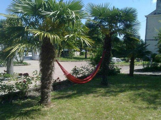 La Basinierre : Hamac et Palmiers du jardin