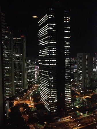 Hilton Tokyo: From the Executive Lounge by night