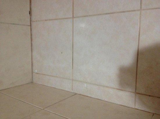 Daytona Beach Residence: Box do banheiro!