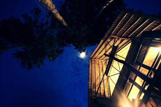 98 Acres Resort and Spa : under the moon